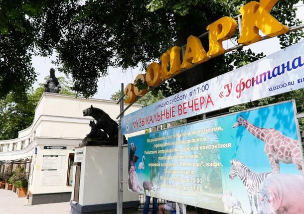 Специалисты оценили модернизацию зоопарка Калининграда